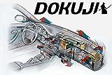 HIPOL DOKUJI Klima-Samurai!!! - Passend für Audi A4 B5- effektives Mittel zur Reinigung, Desinfektion und Erfrischung von Fahrzeugklimaanlagen. Geruch: Fresh Intensive Oder New Car.