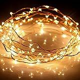 Kohree 3M 60 LEDs Kupferdraht LED Wasserdichte Lichterkette Kupfer Batteriebetrieben mit Timer für Innen Außen Party Hochzeit Weihnachten (Warmweiß)
