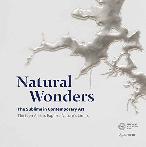 Natural Wonders: The Sublime in Contemporary Art: Thirteen Artists Explore Nature's Limits por Suzanne Ramljak