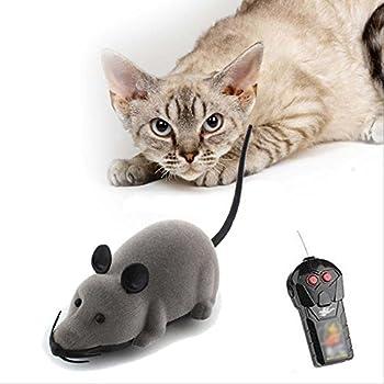 Télécommande sans fil Contrôleur RC Rat Mouse Souris Hameln Animal Jouets pour Chat Chien Chaton Teaser jouer jouet pour animaux fantaisie Funny
