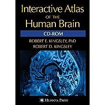 Interactive Atlas of the Human Brain