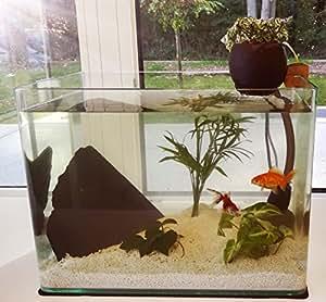 Pack CocoFiltre 30L - Aquarium avec filtration naturelle aquaponie
