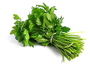 Fresh Produce Coriander - Leaf, Bunch