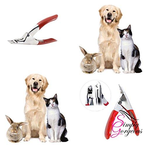 Pet Nagelknipser Cutter für Hunde Katzen Vögel Meerschweinchen Tier Krallen Scherenschnitt