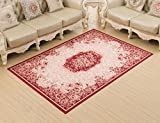 ERRU- Carpets European-style Home Living Room Sofa Coffee Table Rug Bedroom Bedside Study Blanket(2 Colors) ( Color : Red , Size : 80*120cm )