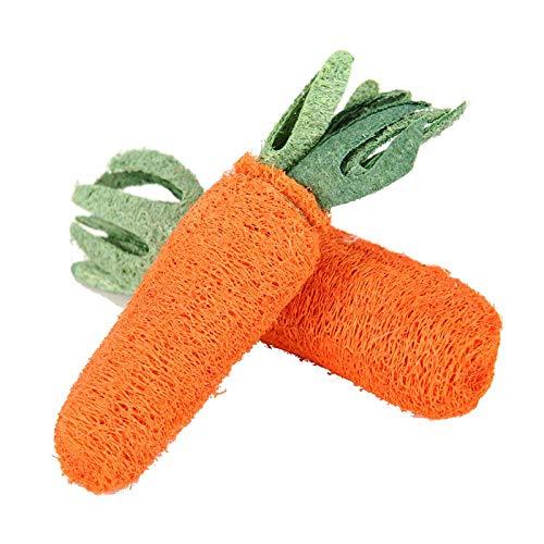 HUYDLD Heimtierbedarf Haustier Spielzeug Karotte geformt Luffa Schwamm Hund Katze Kauspielzeug Orange