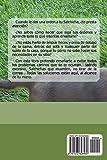 Image de Secretos del Salchicha: Perro-Obediente.com