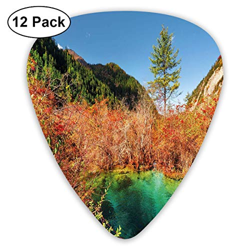 ectrum (0.46mm-0.96mm), Idyllic Fall Landscape With A Creek Among The Forest In National Park Valley Art,For Your Guitar or Ukulele ()
