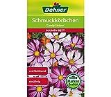 Dehner Blumen-Saatgut, Schmuckkörbchen,