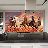 Herde der Pferde laufen gelassen durch Mohnfeld Tiertapete-Natur-Foto-Tapete in 8 Größen erhältlich XXX-Large digital -