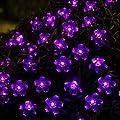 InnooTech LED Solar Lichterkette Außen Weihnachtsbeleuchtung Weihnachten Party Garten Fest Blüten 5 meter 50er Purpur von Innoo Tech - Lampenhans.de