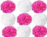 #8: 10 inch Tissue Hanging Paper Pom Poms Flower Ball Wedding Party Outdoor Decoration Tissue Paper Pom Pom Flowers Craft Kit (magantha & White)(Total 9 Piece)