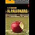 Il pallonaro (Pesci rossi Vol. 8)