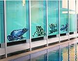 FensterSticker No.382 Four exotic Frogs Set 65x50cm