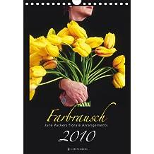 Farbrausch 2010