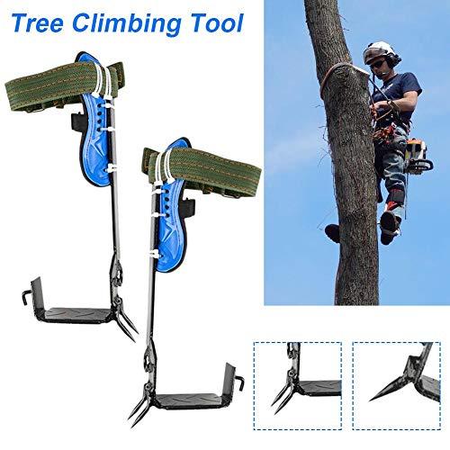 Baumsteigeisen Kletterhilfen Baum Klettern Spike Set, Klettern Bäume Artefakt, Edelstahl, Einfach zu Bedienen für Kommissionierung Obst Jagd Überwachung Klettern