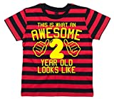 Search : Edward Sinclair This Is What an Awesome 2 Year Old Looks Like Children's Striped T-Shirt 2nd Birthday T-Shirt