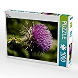 Distel 1000 Teile Puzzle hoch (CALVENDO Natur)