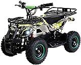 Actionbikes Motors Kinder Elektro Miniquad ATV Torino 800 Watt 36 Volt - Scheibenbremsen - Safety Touch System Fußschalter (Grün Polo)