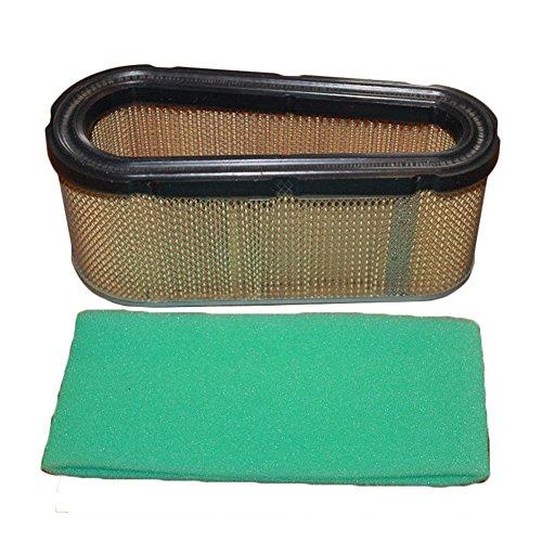 Élément de filtre à air pour tondeuse à gazon Briggs & Stratton 496894 Craftsman tondeuse à gazon filtre à air de remplacement