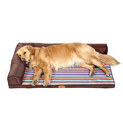 d551e936558 STAZSX Perrera Lavable Golden Retriever Dog Mat Medium Large Dog Labrador  Summer Dog Cama para Perros Summer Pet Supplies, 70X50CM