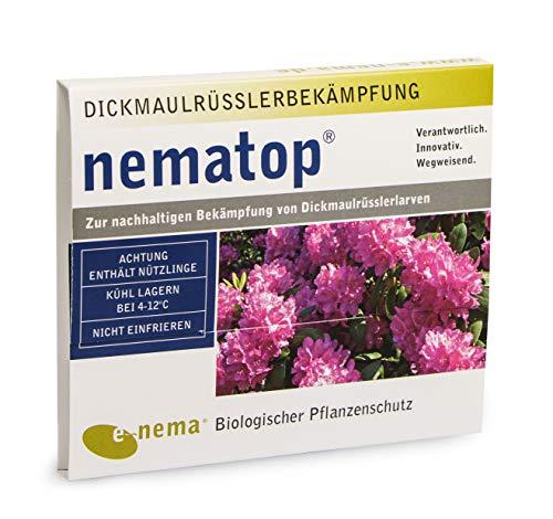 nematop® HB Nematoden zur Bekämpfung des Dickmaulrüsslers - 6 Mio. für 12m²