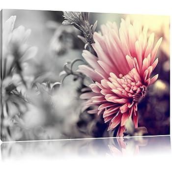 Romantische Blumen Schwarz/Weiß, Format: 120x80 auf Leinwand, XXL ...