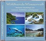 Wohltuende Wasserwelt, Spaziergänge am Wasser, Naturgeräusch Wasser, heilsame Naturklänge zum Loslassen, Wohlfühlen und Entspannen