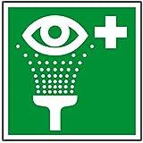 Inter Flower - Rettungszeichen AUGENSPÜLEINRICHTUNG - Warnschild - Erste Hilfe - 25 x 25 cm - PVC/Plastik - grün - Arbeitsschutz - Warnzeichen Kunststoffschild - Arbeitsplatz - Betrieb - Schutz