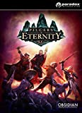Pillars of Eternity: Hero Edition [PC Code - Steam]