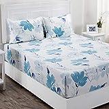 Maspar Superfine 210 TC Cotton Double Bedsheet with 2 Pillow Covers - Floral, Blue (BL31944)