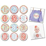Sticky Bellies Baby Month Stickers - Gar...
