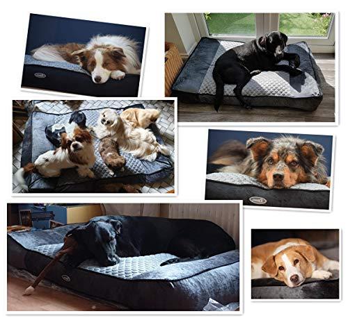 Zoom IMG-1 pecute letto per cani gatti