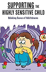 Supporting the Highly Sensitive Child: Making Sense of Meltdowns: Volume 2 (My Highly Sensitive Child)