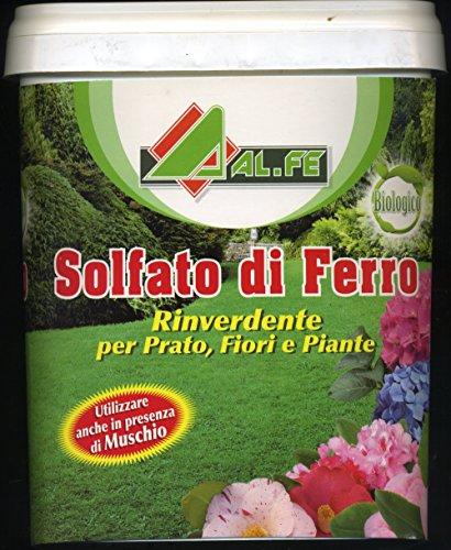 solfato di ferro rinverdente e antimuschio per prato fiori piante da 5 (Acqua In Cemento)