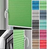 HOME-VISION blickdicht Plisse-rollo Montage mit Schrauben EASYFIX im Glasfalz, Kollektion
