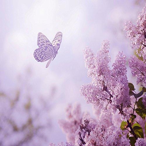 Purple flowers by peder b helland on amazon music amazon dance of life mightylinksfo