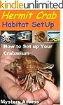 Hermit Crab Habitat Setup : Hermit Cr...