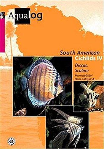 Aqualog, Southamerican Cichlids IV - Diskus und Skalare