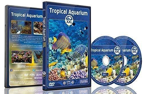 aquarium-dvd-tropisches-aquarium-xxl-2-stunden-mit-bunten-korallen-und-fischen