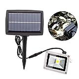 10W Solar Energie LED Scheinwerfer aufladbare Garten-Strahler wasserdicht Haus Garten Landschaftsbild Lampe Nachtlicht (kalt weiß)
