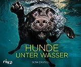Hunde unter Wasser - Seth Casteel