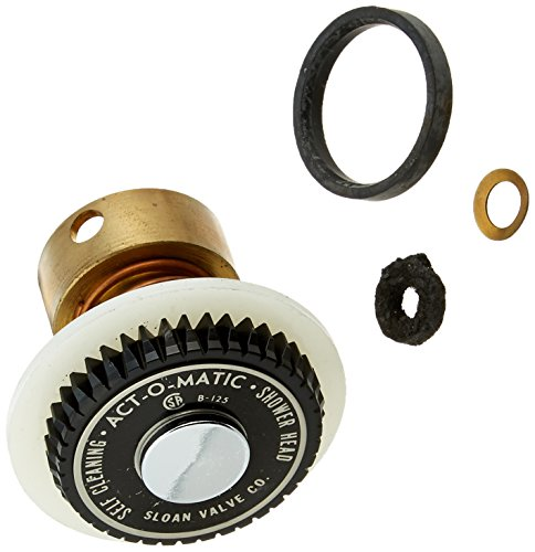 Sloan 4328464 Shower Head Repair Kit by