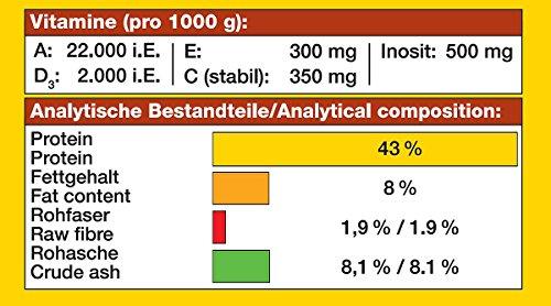 JBL NovoTab 30230 Alleinfutter für fleischfressende Aquarienfische, Tabletten 100 ml