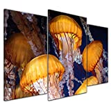 Kunstdruck - Quallen - 100x60 cm 3 teilig - Bilder als Leinwanddruck - Wandbild von Bilderdepot24 - Tierwelten - Leben im Meer - Quallen im Wasser