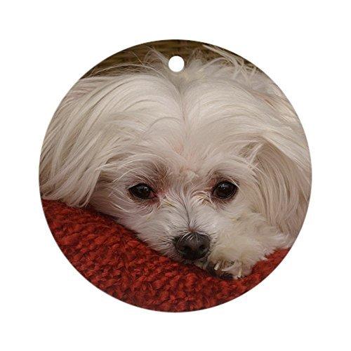 Enidgunter Malteser-Ornament, rund, Weihnachtsdekoration -