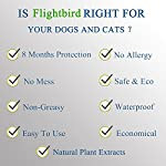 flea and tick collar for dog cat, 8 months protection, natural plant extracts-waterproof-safe & hypoallergenic-anti flea and tick prevention-pest control collars for pets 25 inches Flea and Tick Collar for Dogs and Cats, 8 Months 51NtqnSJDjL