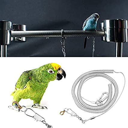 6M Parrot Bird Anti-Bite Flying Training Rope Guinzaglio per Agapornis Fischeri Cockatiels Starling Birds (Colore Casuale) (#1)