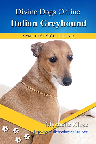 Italian Greyhound (Divine Dogs Online Book 19) (English Edition) -