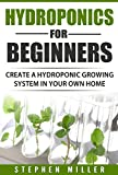 Hydroponics for beginners: Create a Hydroponic System in Your Own Home